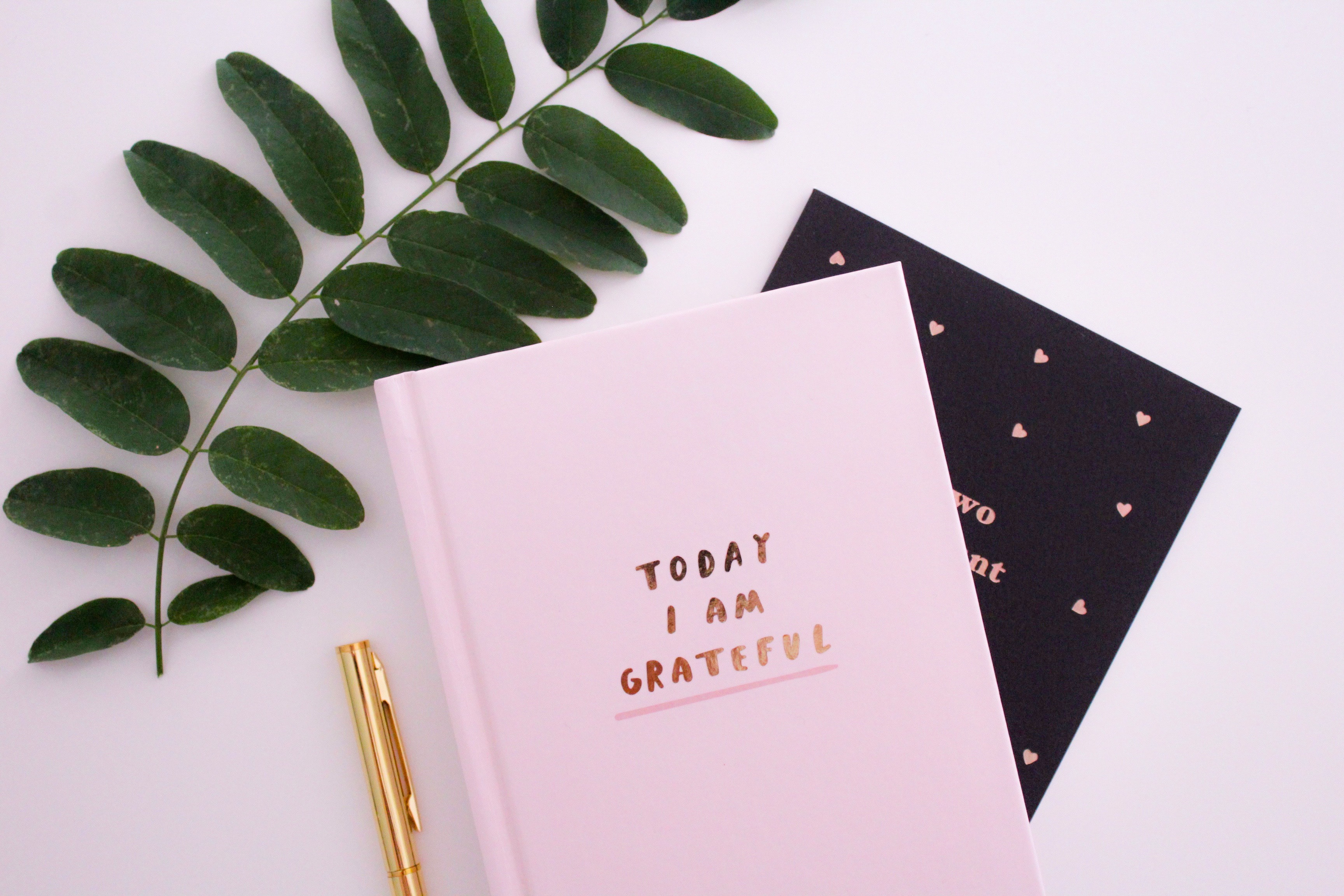 Gratitude: Practice and Benefits